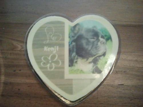 Bulldog chocoladehart 50 jaar cadeau